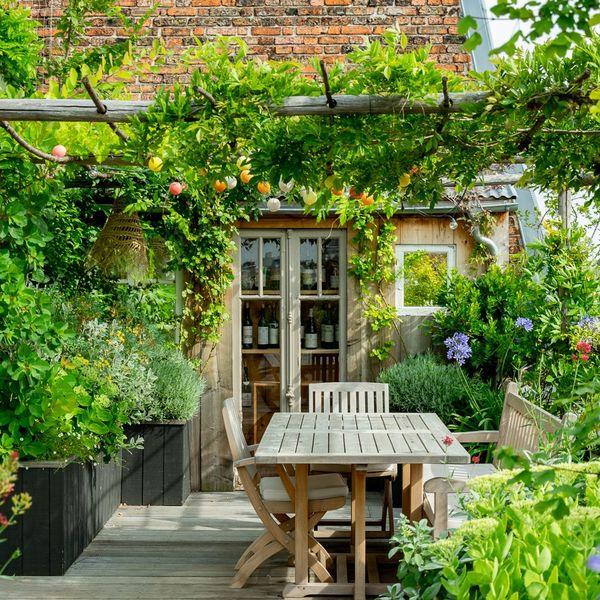 une-terrasse-en-ville-ultra-vegetalisee_6116457